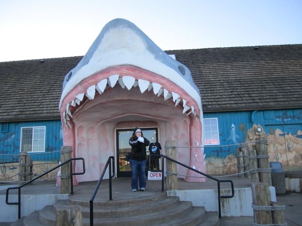 Shark gift shop Ocean Shores WA