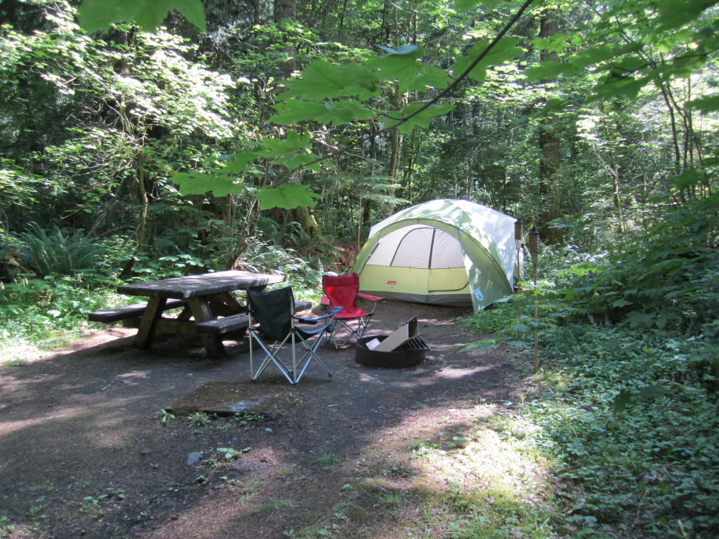Big Creek Campground Mt Rainier
