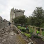 Poison Garden Blarney Castle Ireland