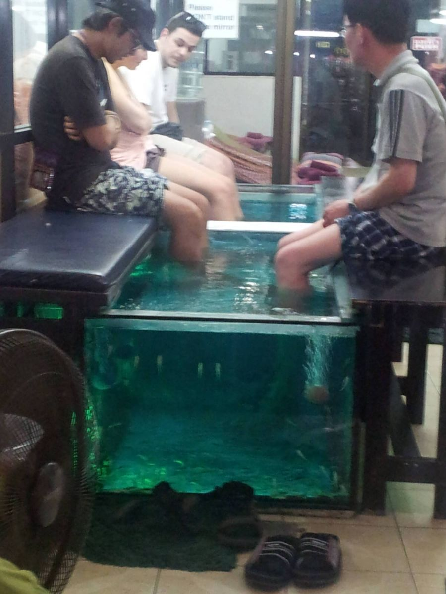 fish spa Khao San Road Bangkok