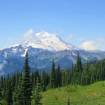 Mt. Rainier National Park 2013: Sunrise Side