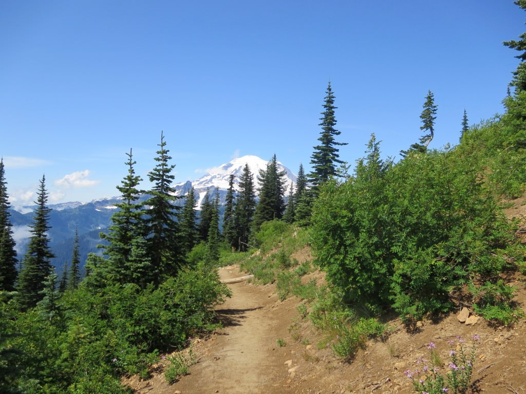 Naches Peak Trail Mt. Rainier National Park (4)
