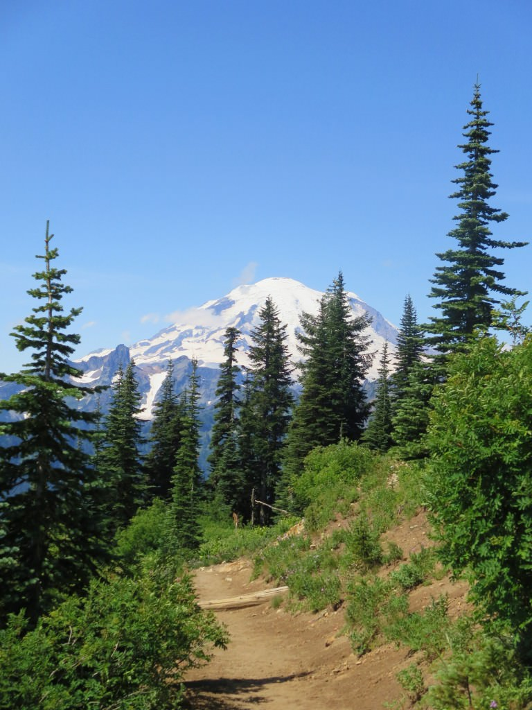 Naches Peak Trail Mt. Rainier National Park (5)