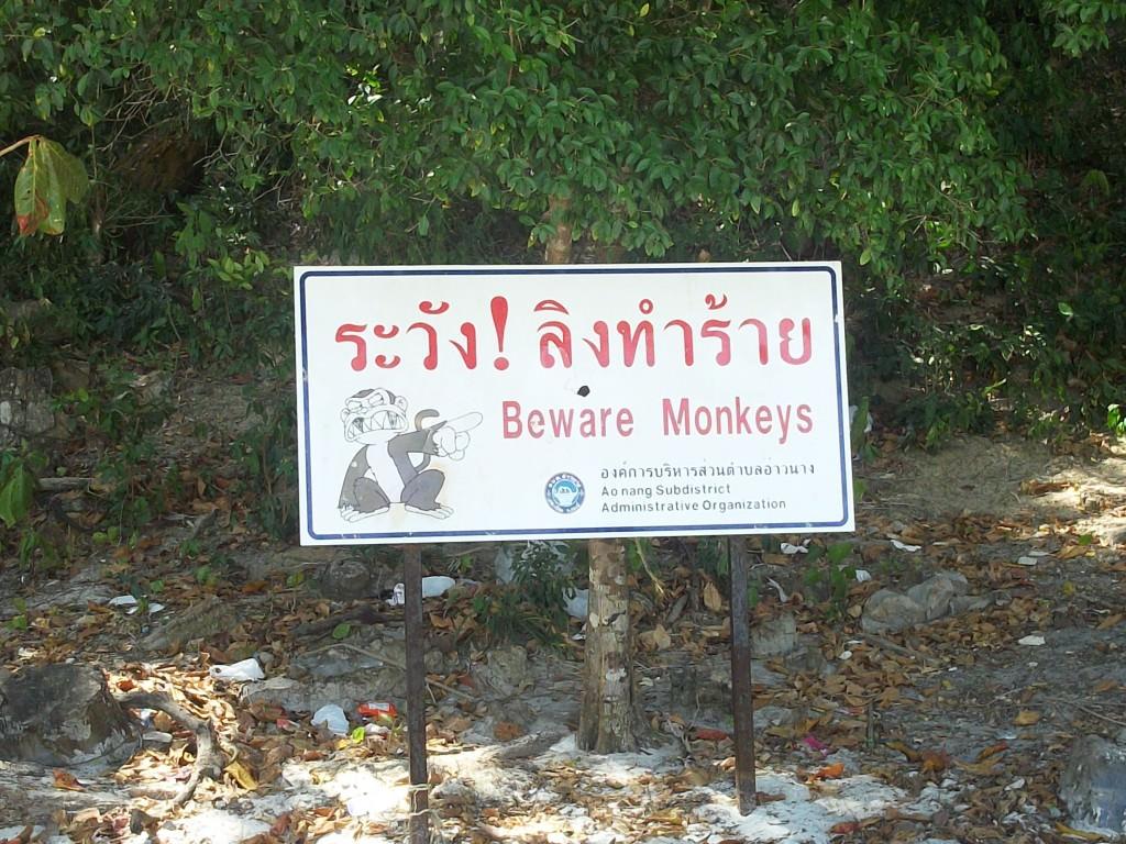 Monkey Beach, Koh Phi Phi Thailand 045