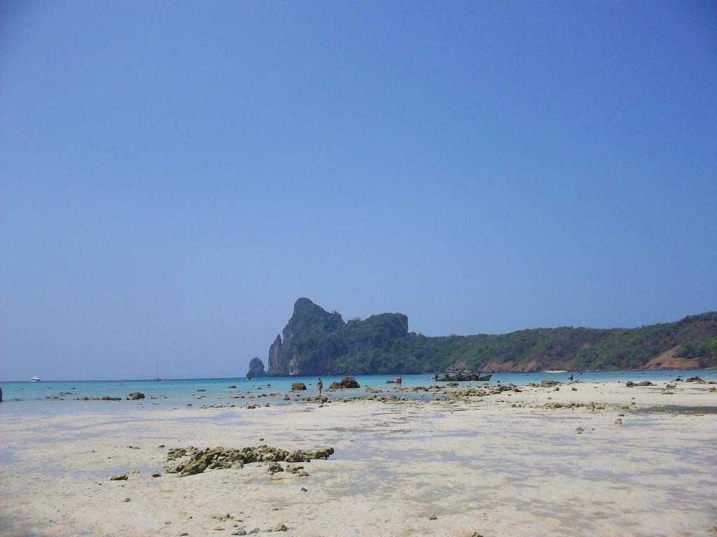 Loh Dalum Bay Phi Phi Don Thailand 065