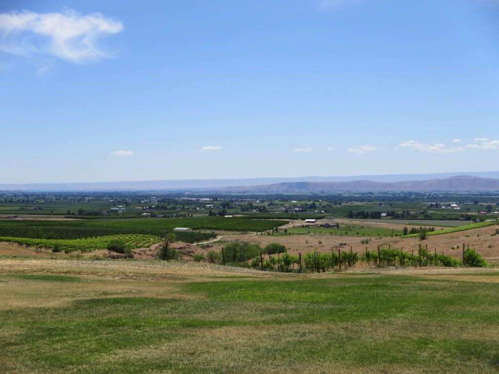Rattlesnake Hills WA Knight Hill Winery