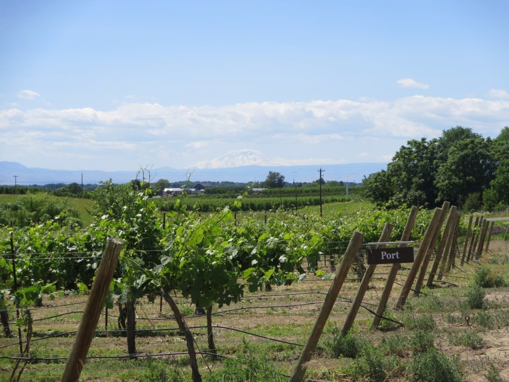 Bonair Winery wine tasting in Yakima Valley