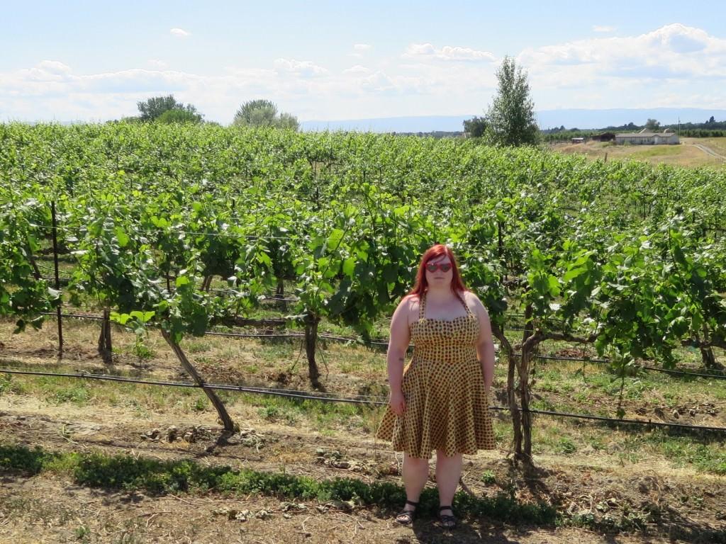 Rattlesnake Hills Yakima Valley wine tasting weekend 876
