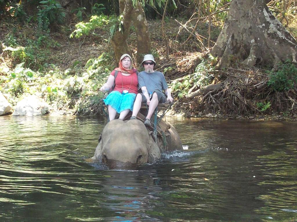 elephants in Thailand 160