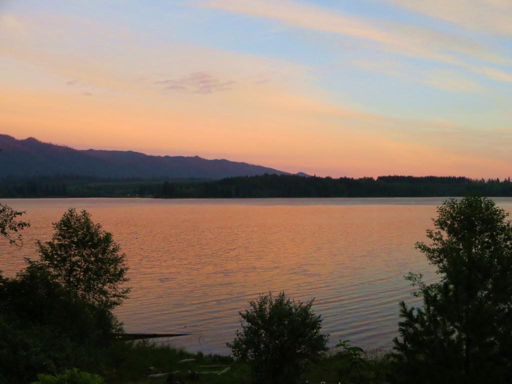 Lake Quinault 2014 076