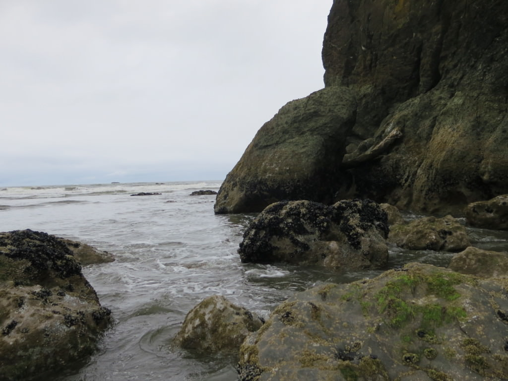 Ruby Beach tide pools