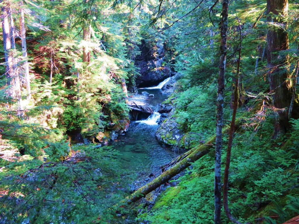 Franklin Falls day hike WA