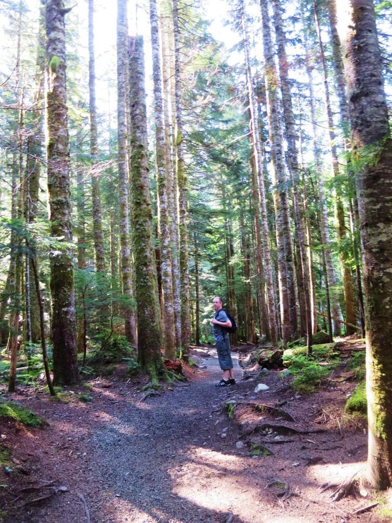 Franklin Falls day hike WA