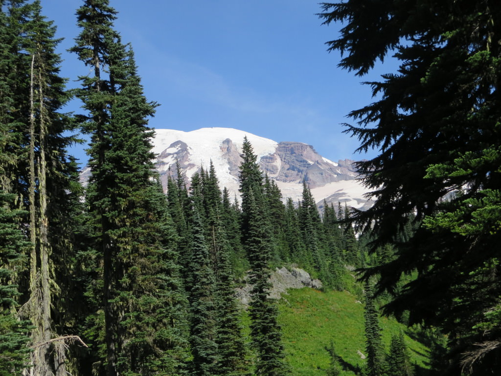 High Lakes Loop Trail Mt Rainier