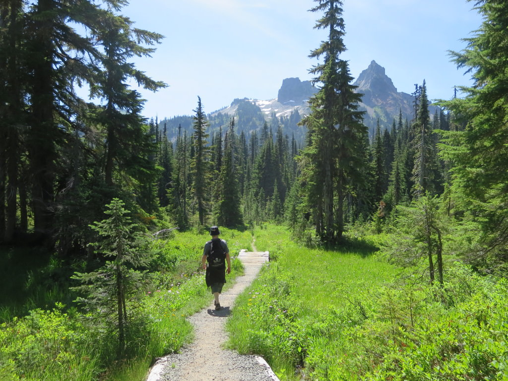 coping with travel fever Hiking the High Lakes Loop Trail at Mt Rainier National Park, WA