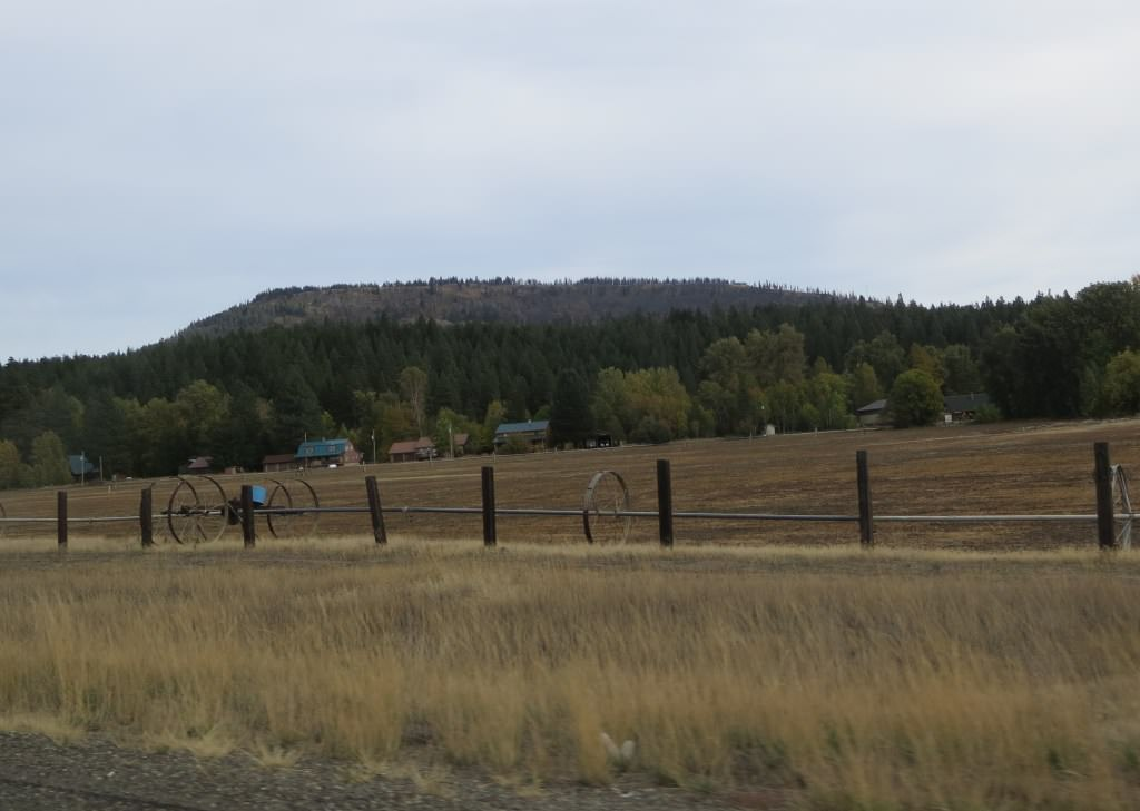Farms on Highway 97