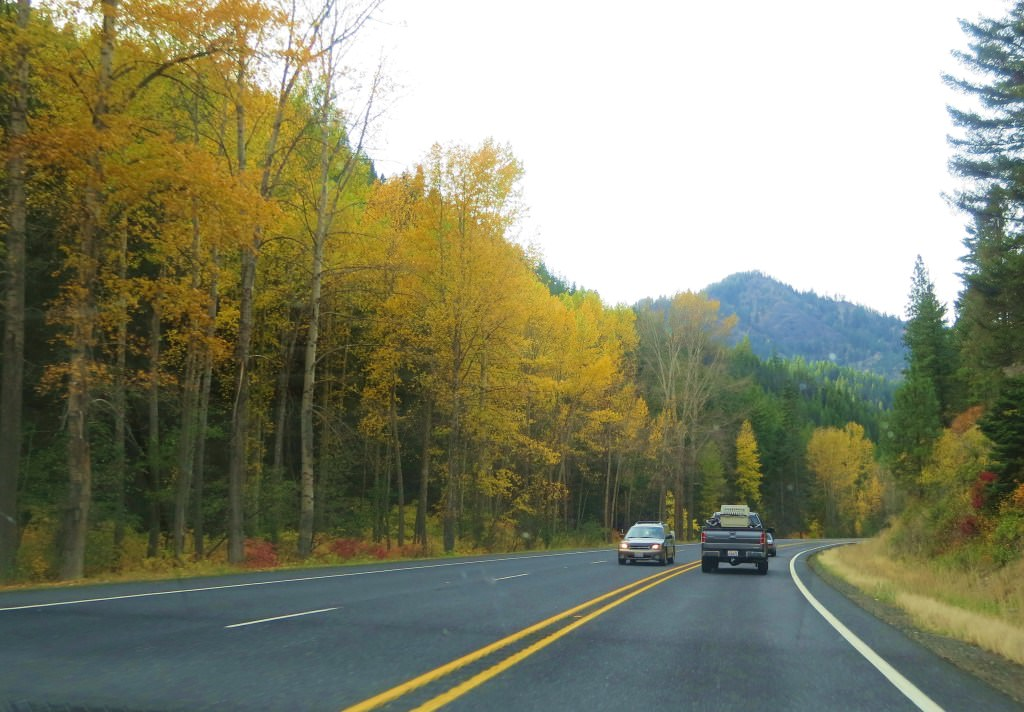 Gorgeous fall leaves on Highway 97