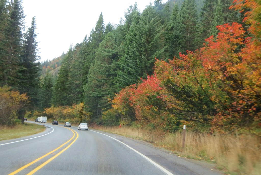 Highway 2 Washington fall leaves