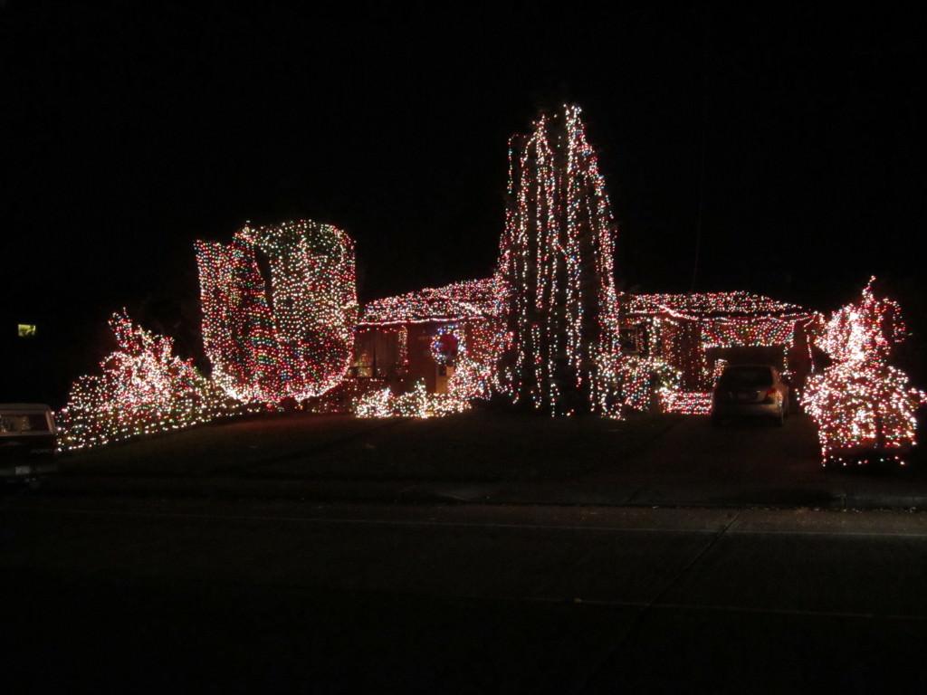 Overzealous Christmas lights