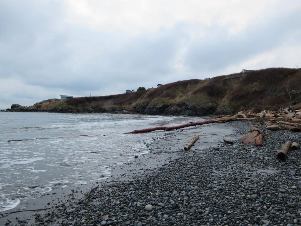 Eagle Cove Beach San Juan Island