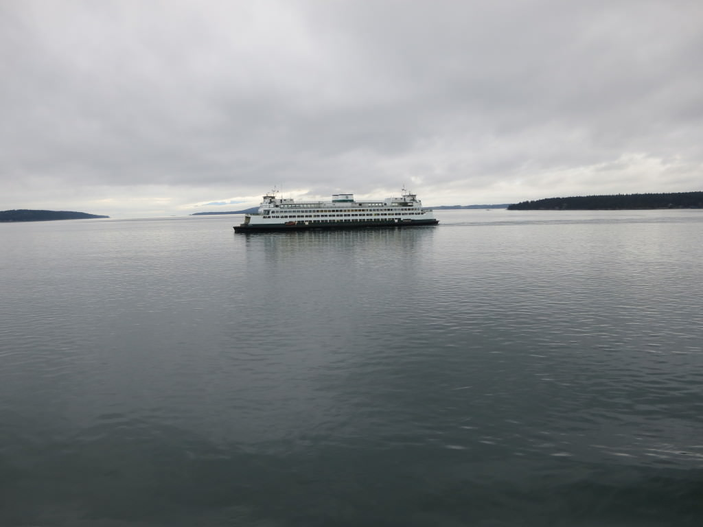 Friday Harbor in winter (28)