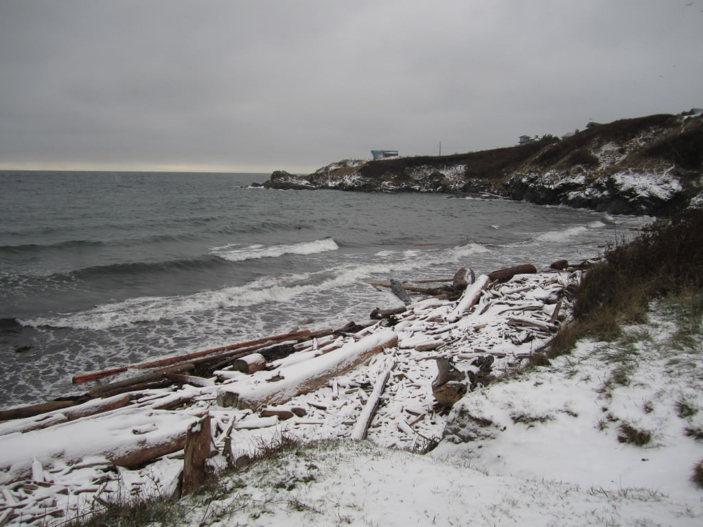 Eagle Cove Beach in the snow