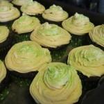 Culinary Adventures: Irish Car Bomb Cupcakes