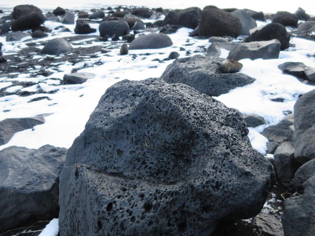 Iceland-Reynisfjara-Beach-5