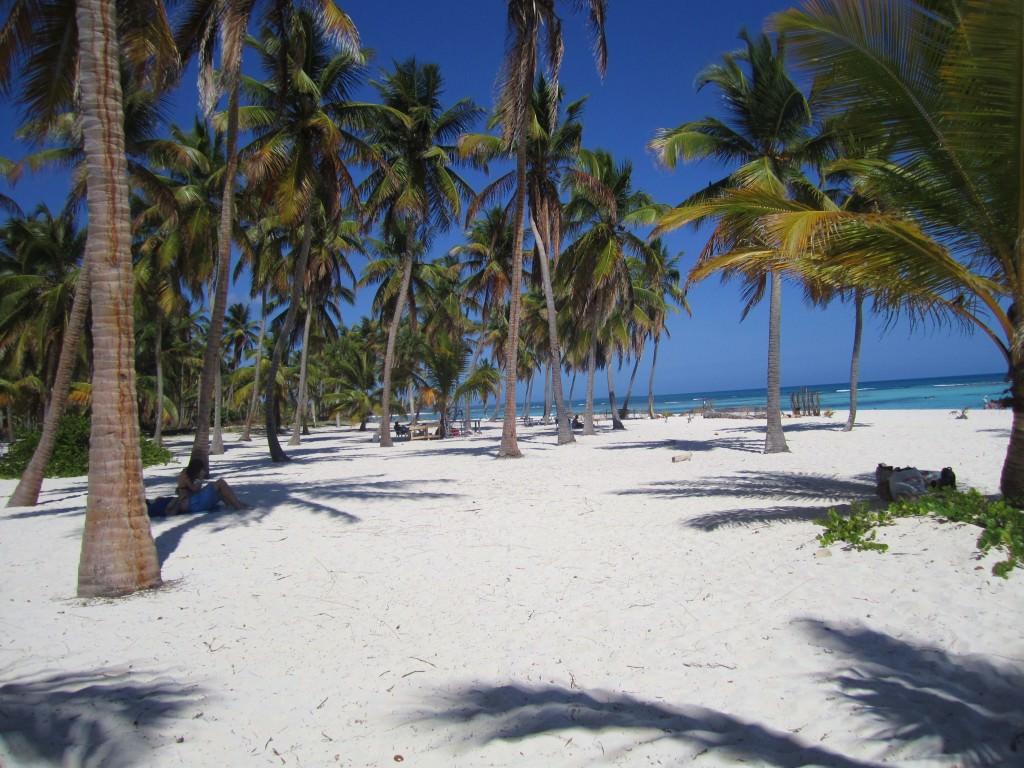 Isla-Saona-Beach (10)