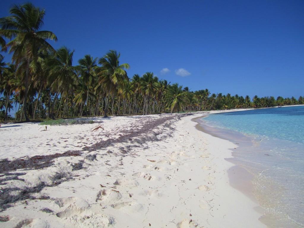 Isla-Saona-Beach (20)