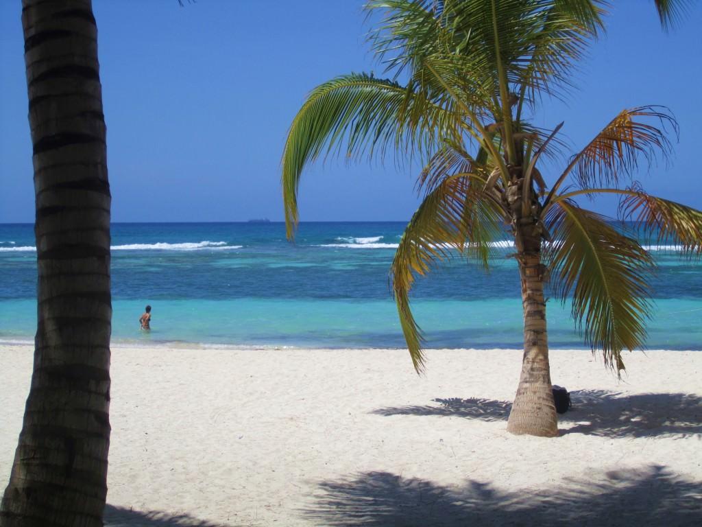 Isla-Saona-Beach (9)