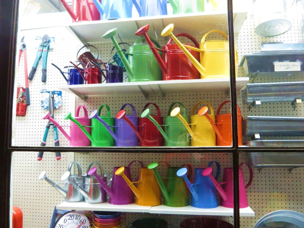 rainbow watering cans portland
