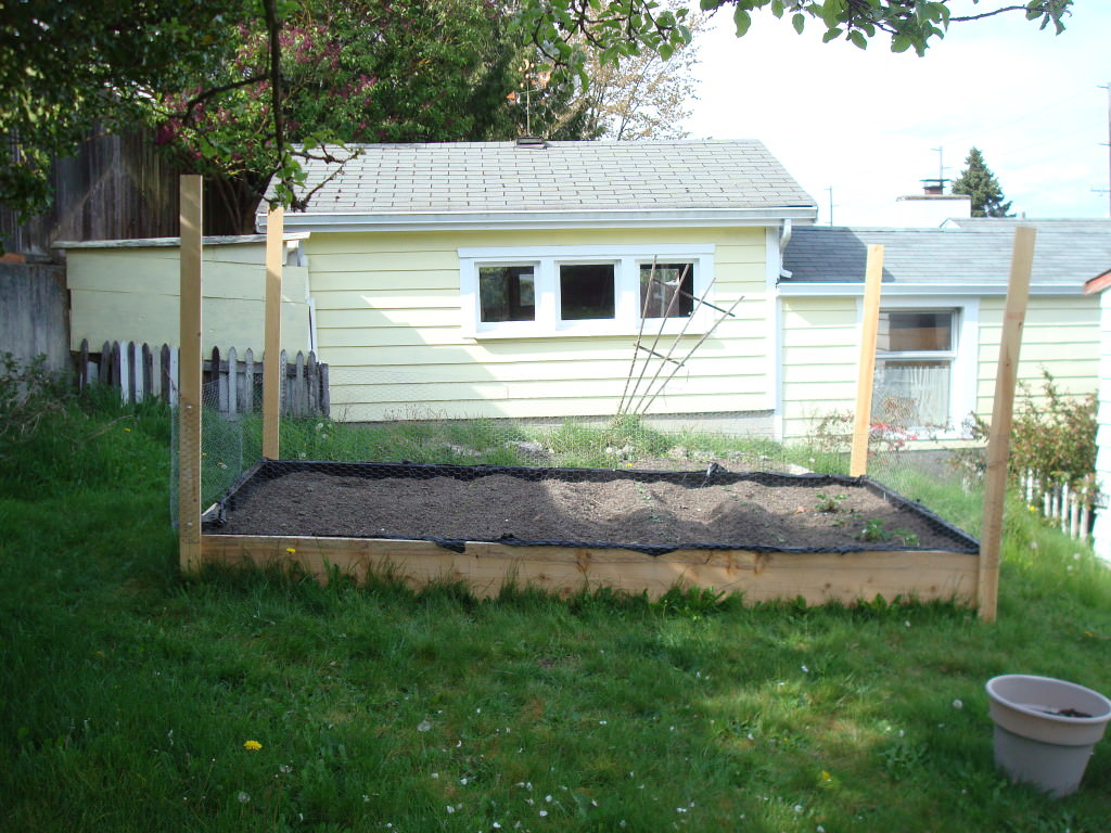Vegetable gardening building a raised bed