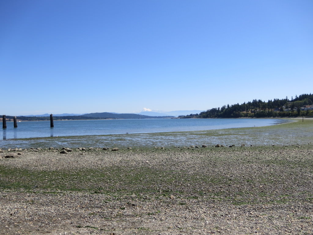 Anacortes Ferry Terminal beach