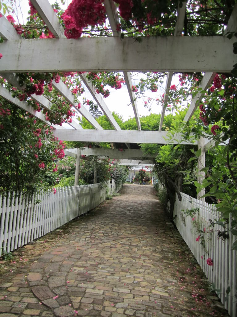 Roche-Harbor-San-Juan-Island-Summer (5)