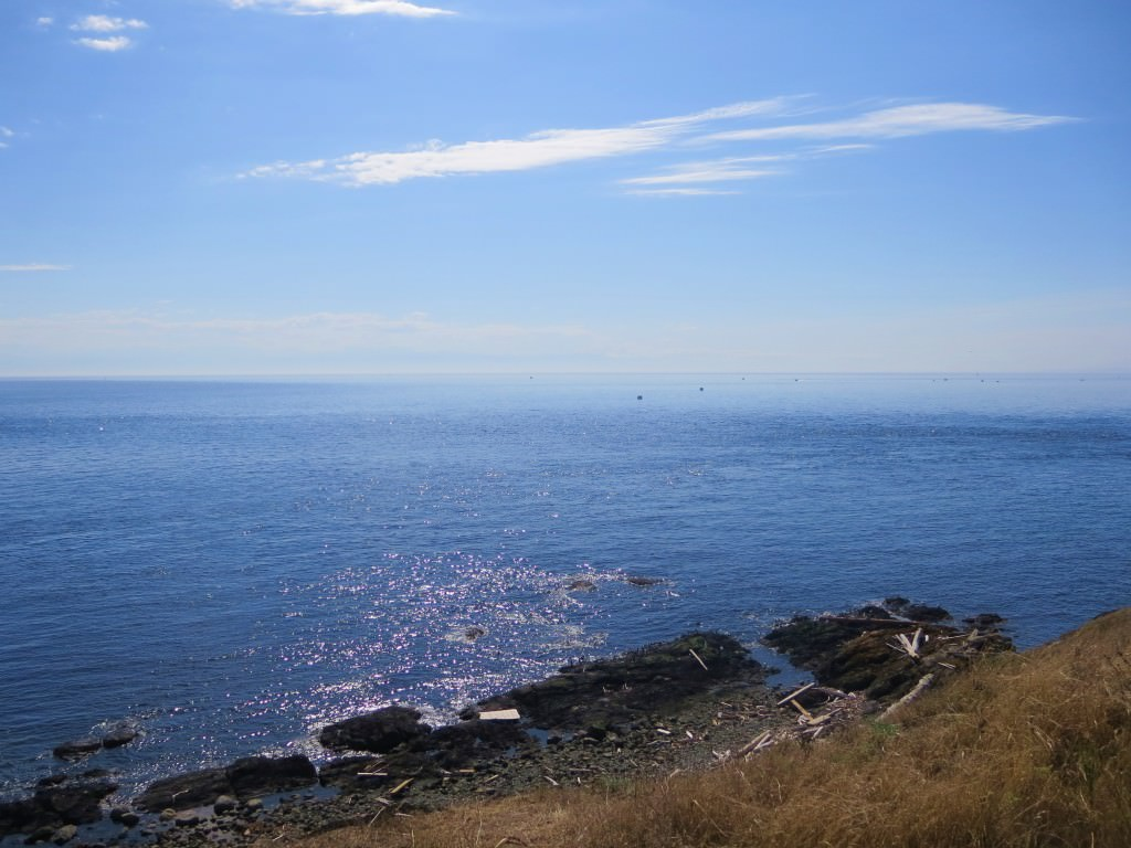 cattle-point-lighthouse-american-camp-san-juan-island