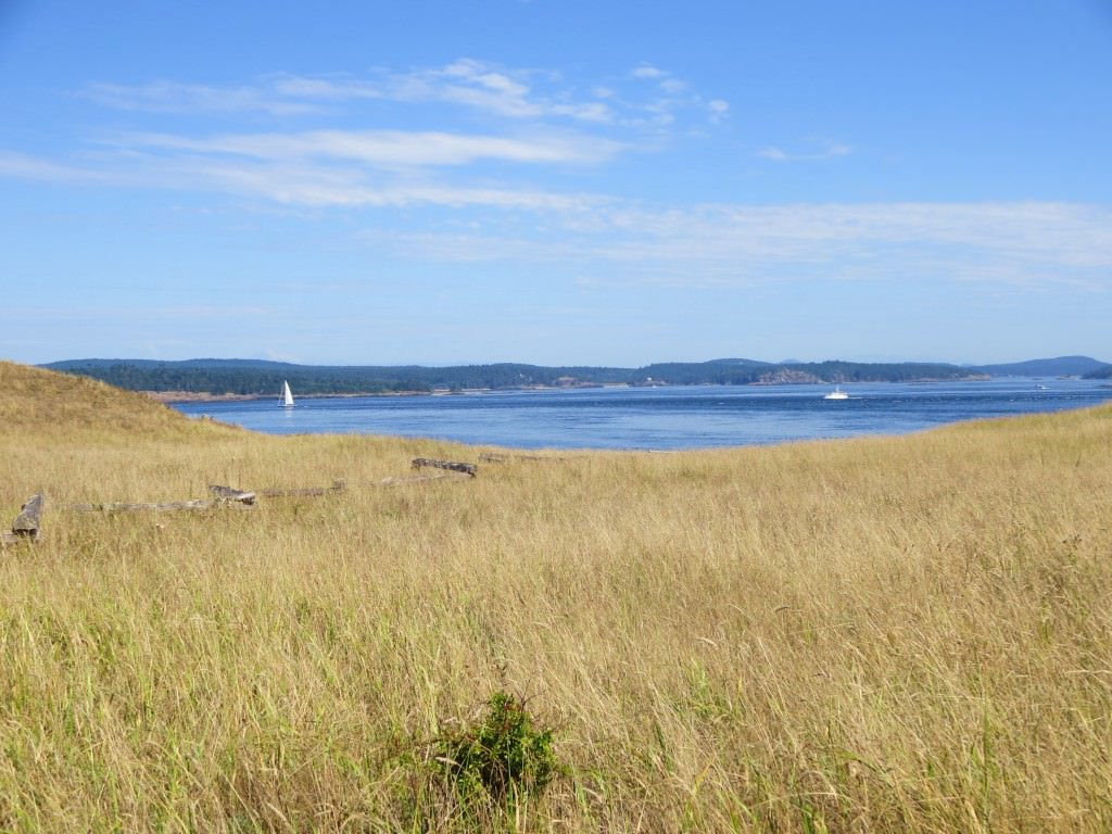cattle-point-lighthouse-american-camp-san-juan-island (4)