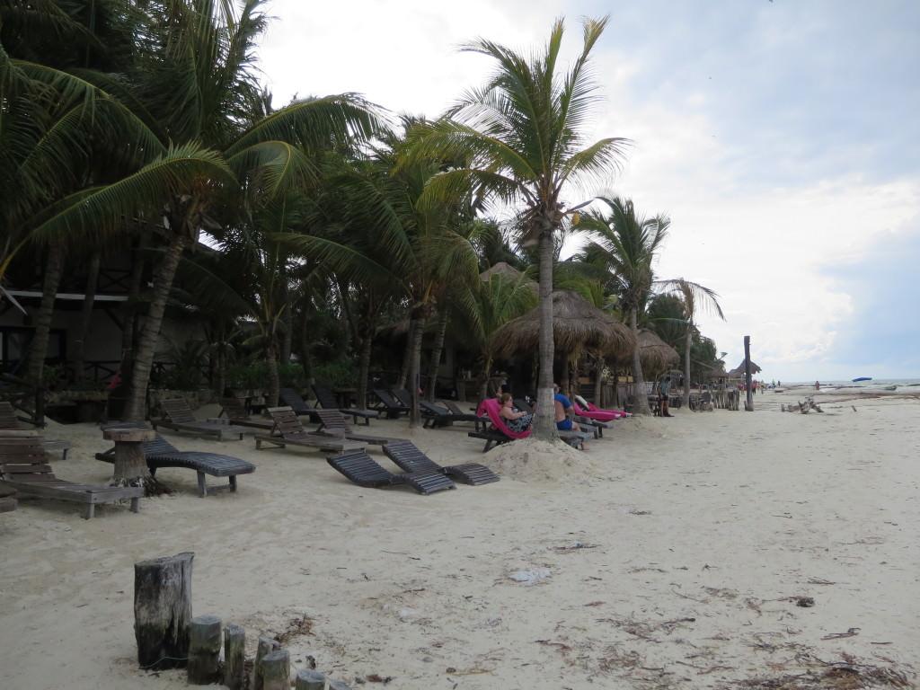Hotel La Palapa beach Isla Holbox Mexico