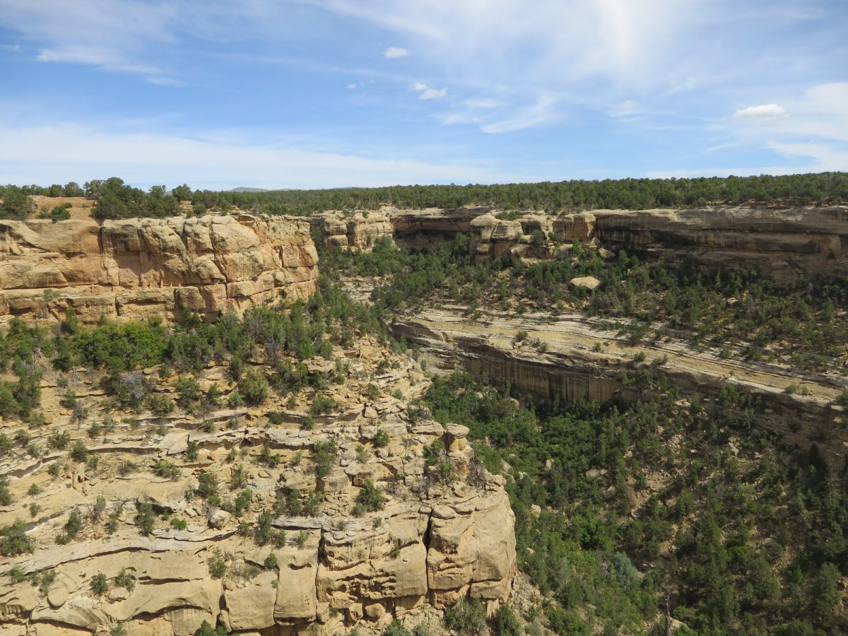 Canyon where cliff dwellings are located, Mesa Verde National Park