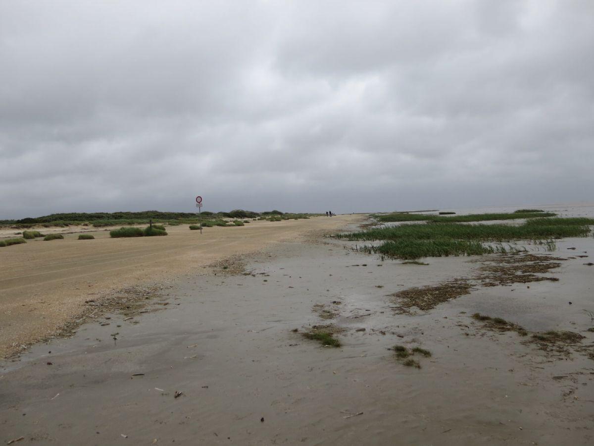 Sønderho beach, Fanø