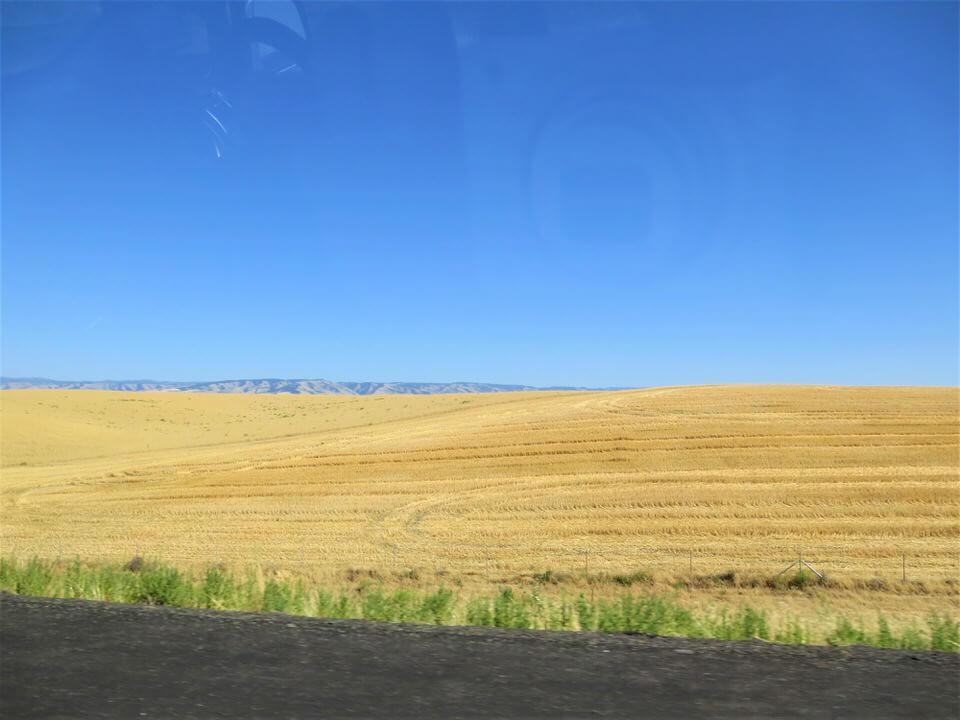rolling hills near walla walla